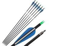 Fiberglass arrows3